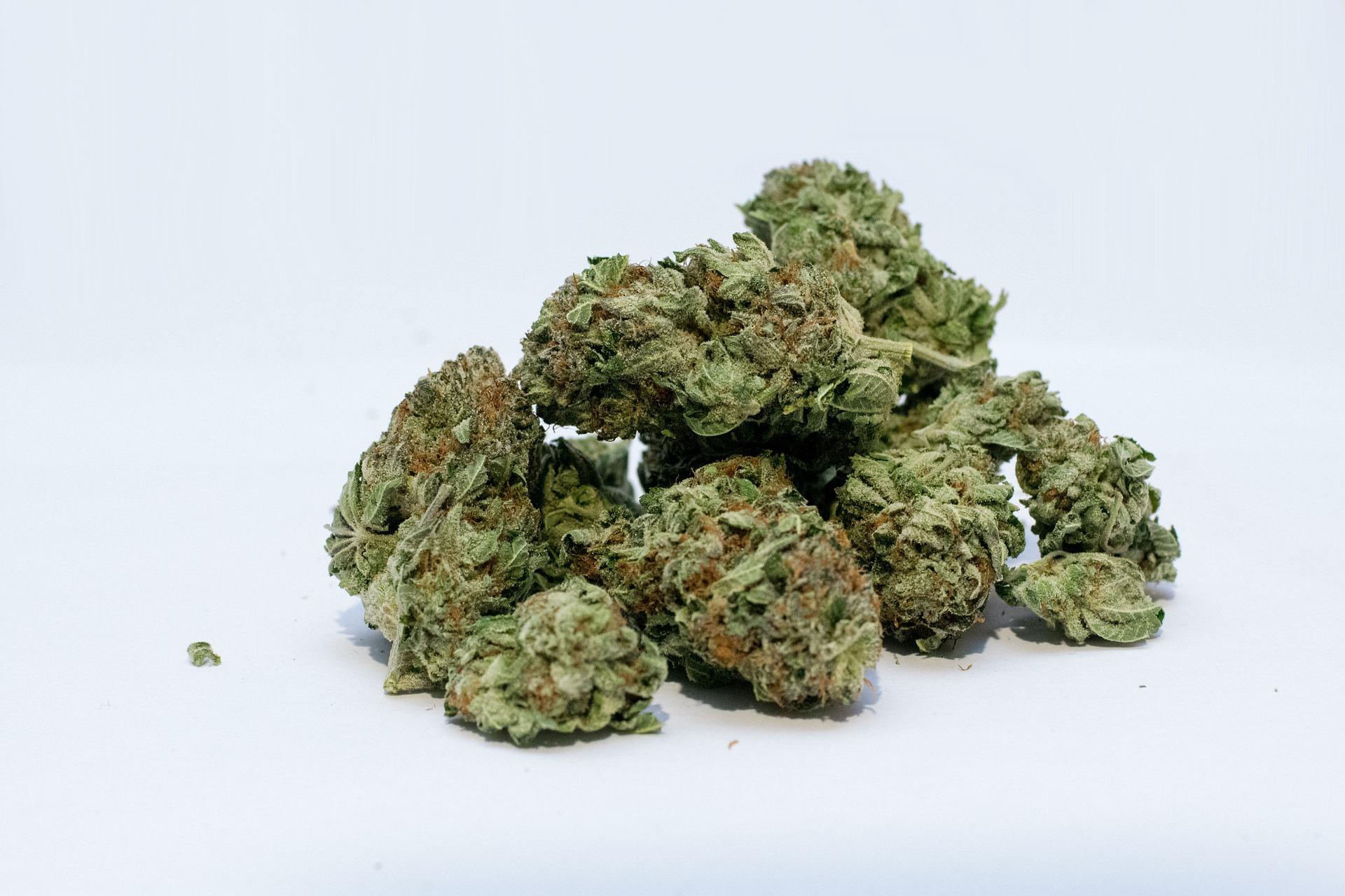 exención del cónyuge en la destrucción de drogas
